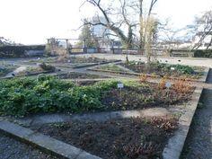 Photo of Old Botanical Garden