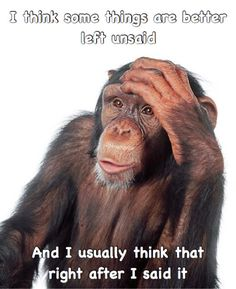 Funny Animals With Captions, Funny Animal Memes, Cute Funny Animals, Funny Relatable Memes, Funny Posts, Funny Monkeys, Animal Humor, Animal Quotes, Funny Laugh