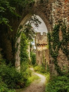 It's a beautiful world — Gwrych Castle / Wales (by Einir). Chateau Medieval, Medieval Castle, Beautiful Architecture, Beautiful Buildings, Places To Travel, Places To See, Beautiful World, Beautiful Places, Kirchen