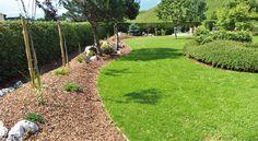 Beetbegrenzung sorgt für Struktur und Harmonie im Garten