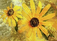 Flowers Greeting Card featuring the mixed media Golden flowers by Thea Walstra