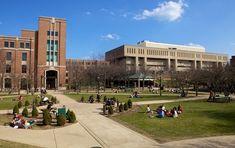 DePaul University   Best College   US News
