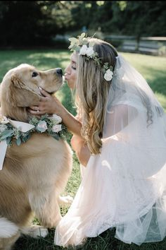 Having my dog in my wedding was my dream💫✨ Dog Wedding Dress, Dream Wedding, Wedding Hair, Wedding Photography Poses, Wedding Poses, Wedding Ideas, Golden Retriever Wedding, Photos With Dog, Super Cute Puppies