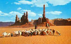 Navajo allevamento, Monument Valley