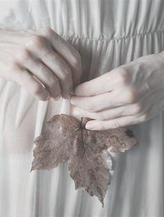Autumn & Eve  ~Kennedy
