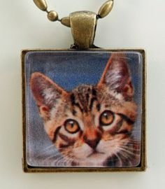 Brown Tabby Kitten Cat in Square Cabochon Vintage Setting - Cat Rescue Donation. $9.95, via Etsy.