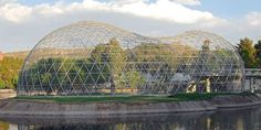 Aviary gridshell dome