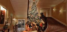 Claridge's in London's Posh Mayfair neighborhood is fabulous anytime of year. Check out the Dolce & Gabbana Christmas Tree! Escape to These Top 5 Winter Wonderlands This Holiday Season — The Days of the Chic