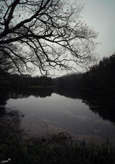 by ♡Gosia M more: http://xgosia-mx.tumblr.com   &   https://www.facebook.com/gosiamphoto  #view #gosiam #lake #dark #forest #wood