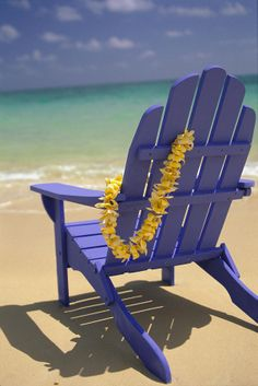Beach Chair (By Dana Edmonds)
