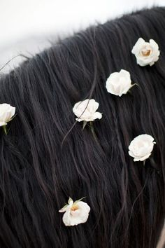 wedding horse flowers honey of a thousand flowers horse hair horses hair and flowers floral Horse Flowers, Flowers In Hair, White Flowers, Wedding Flowers, Flower Hair, White Roses, Pretty Flowers, All The Pretty Horses, Beautiful Horses