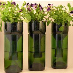 Cute planter idea.@Corrie Traxler Chandler cut wine bottles! :)