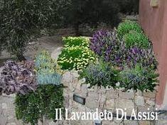 Progettare Il Giardino Gratis : 29 fantastiche immagini in i progetti giardini gratis de il
