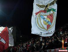 A Minha Chama: TdL MF: Moreirense 3 Sport Lisboa e Benfica 1