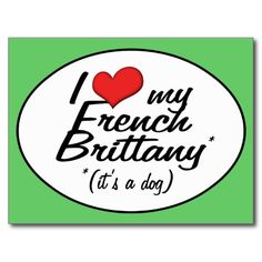 ==> reviews          	I Love My French Brittany (It's a Dog) Post Card           	I Love My French Brittany (It's a Dog) Post Card today price drop and special promotion. Get The best buyThis Deals          	I Love My French Brittany (It's a Dog) Post Card Online Secure Check out Q...Cleck link More >>> http://www.zazzle.com/i_love_my_french_brittany_its_a_dog_post_card-239268727905456617?rf=238627982471231924&zbar=1&tc=terrest