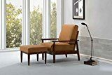 #3: Bergen Chair Bombay Brown  https://www.amazon.com/fat-june-Bergen-Chair-Bombay/dp/B01N9X9IPM/ref=pd_zg_rss_nr_hg_3733481_3?ie=UTF8&tag=a-zhome-20