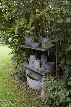 tinware in the garden