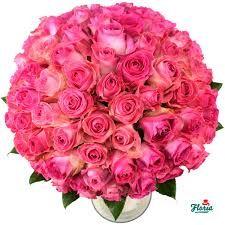 trandafiri - Căutare Google
