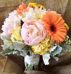 Beautiful vintage inspired bridal bouquet for today's wedding of peach gerbera daisies, yellow hydrangea, baby breath, blush peonies and dusty miller.