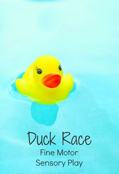 Duck Race Fine Motor Sensory Play for Toddlers- not only do they read a book first , there are lots of open ended opportunities for questions and even scientific thinking while getting those fingers ready for writing!
