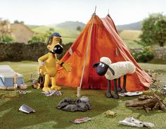 Camping! Peace In The Valley, Watch Funny Videos, Sheep Art, Funny Video Clips, Shaun The Sheep, Chicken Runs, Adult Cartoons, Cartoon Kids, Funny Kids