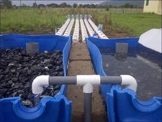 Educational aquaponics project in Ghana