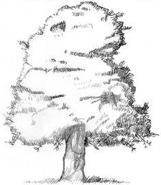 Un disegno di albero