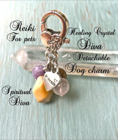 Healing Genuine Crystal Diva Detatchable,Reiki Dog Charm,Heart Clasp ,Princess Charm, Genuine GemstonesDescription Card, and Gift bag by TheSpirtualDiva on Etsy