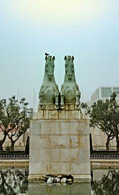 horses by ruiejoao #fadighanemmd