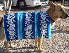 Homemade Dog Clothes