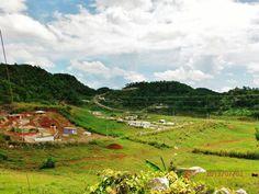 Jamaican farming