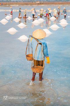 Salt Field in Hon Khoi, Vietnam