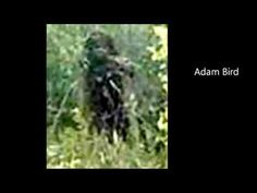 Sasquatch Faces Found During Research - YouTube