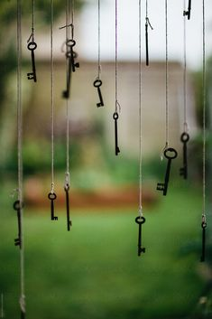 conceptual photo of lots of different vintage skeleton keys hanging outdoors in front of a green natural background. Blur Image Background, Blur Background In Photoshop, Desktop Background Pictures, Blur Background Photography, Studio Background Images, Background Images For Editing, Light Background Images, Picsart Background, Natural Background
