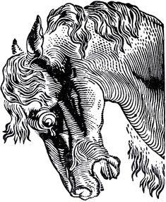 Vintage Logo Animal Graphics Fairy 22 New Ideas Horse Illustration, Engraving Illustration, Graphic Design Illustration, Horse Clip Art, Horse Clipping, Horse Posters, Graphics Fairy, Vintage Horse, Horse Print