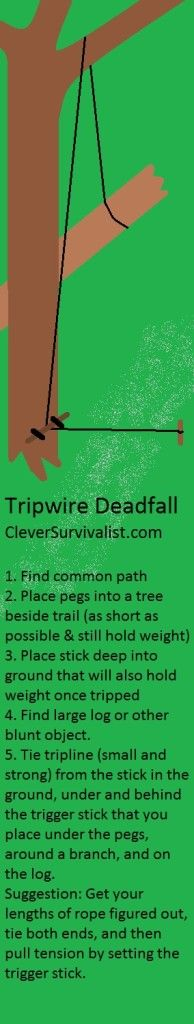 489 Best Traps Snares Images Camping Survival Survival Stuff