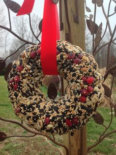 A birdwreath can supply hours of entertainment for you and your family.
