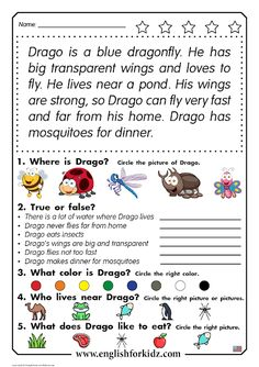 Reading comprehension worksheet for elementary school English reading comprehension worksheet: Drago the Dragonfly First Grade Reading Comprehension, Phonics Reading, Reading Comprehension Worksheets, Reading Passages, Kindergarten Reading, Teaching Reading, Reading School, Comprehension Strategies, Reading Response