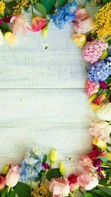 Wall paper celular paisajes flores Ideas for 2019 Flower Background Wallpaper, Framed Wallpaper, Flower Backgrounds, Wallpaper Backgrounds, Cellphone Wallpaper, Iphone Wallpaper, Love Flowers, Beautiful Flowers, Deco Floral
