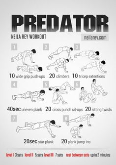 Predator Workout