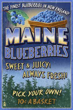 Maine Blueberries Vintage Sign - Lantern Press Poster