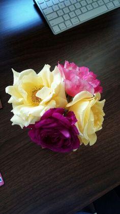 Bright floral arrangement Floral Arrangements, Bright, Rose, Flowers, Plants, Rose Flower Arrangements, Flower Arrangements, Pink, Roses