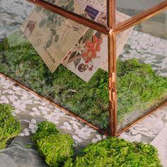 preserved moss Moss Centerpieces, Card Box Wedding, Wedding Ideas, Moss Terrarium, Moss Wall, Cute Frames, Moss Garden, Beautiful Fairies, Garden Gifts