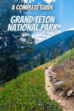 Here is a complete guide to Grand Teton National Park. national park road trip l USA national parks l national parks USA road trips l Teton national park #USAnationalparks #nationalparks #GrandTetonNationalPark Best National Parks Usa, National Park Camping, Grand Teton National Park, Road Trip Usa, State Parks, Vacation, Trips, Viajes, Vacations