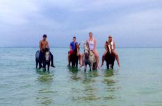 Bareback horse riding in the sea - TICKED