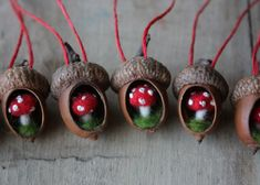 A whole lineup of tiny acorn ornaments I've made.  I hollowed out acorn bodies and glued in tiny mushrooms I made out of wool.  Crafts for squirrels.