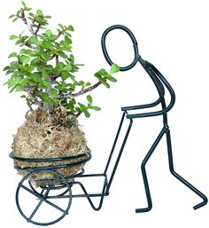 KOKEDAMA AFRICAN BUSH (MINI JADE) WITH HOLDER SET Welding Art Projects, Metal Art Projects, Metal Crafts, Wire Crafts, Woodworking Projects, House Plants Decor, Plant Decor, Balcony Plants, Metal Drawing