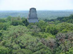 Tikal+206