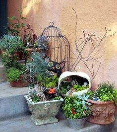 Interesting Container Gardening Vegetables | Container Doesn't Mean Contained — Staging Your Home by Bringing ...