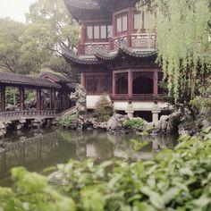 Shaghai Tea House | China (by Ludvig Stolterman)